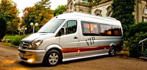 VIP Bussines Van